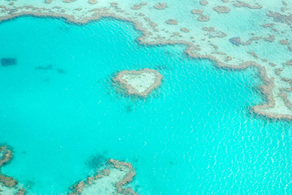 Heart Shape Reef, The Whitsundays