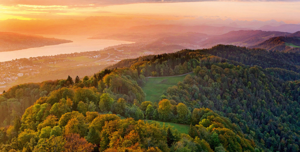 Uetliberg Autumn sunrise